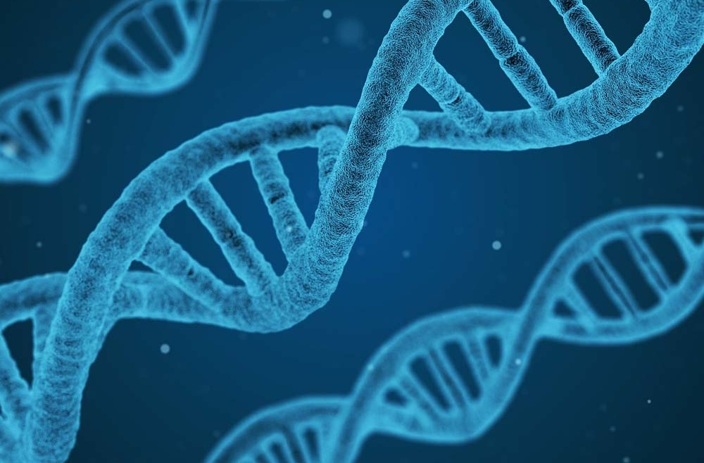 Nuevo proyecto de investigación de IANEC junto con la Facultad de Medicina de la Universidad de Málaga para conocer las influencias genéticas en la progresión del Alzheimer.